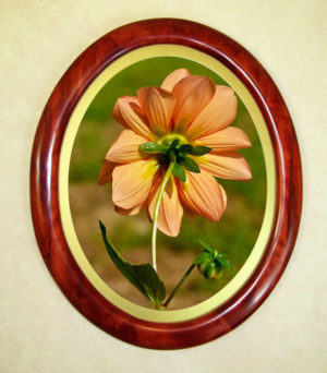 Red Oval Picture Frame With Oval Gold Matte