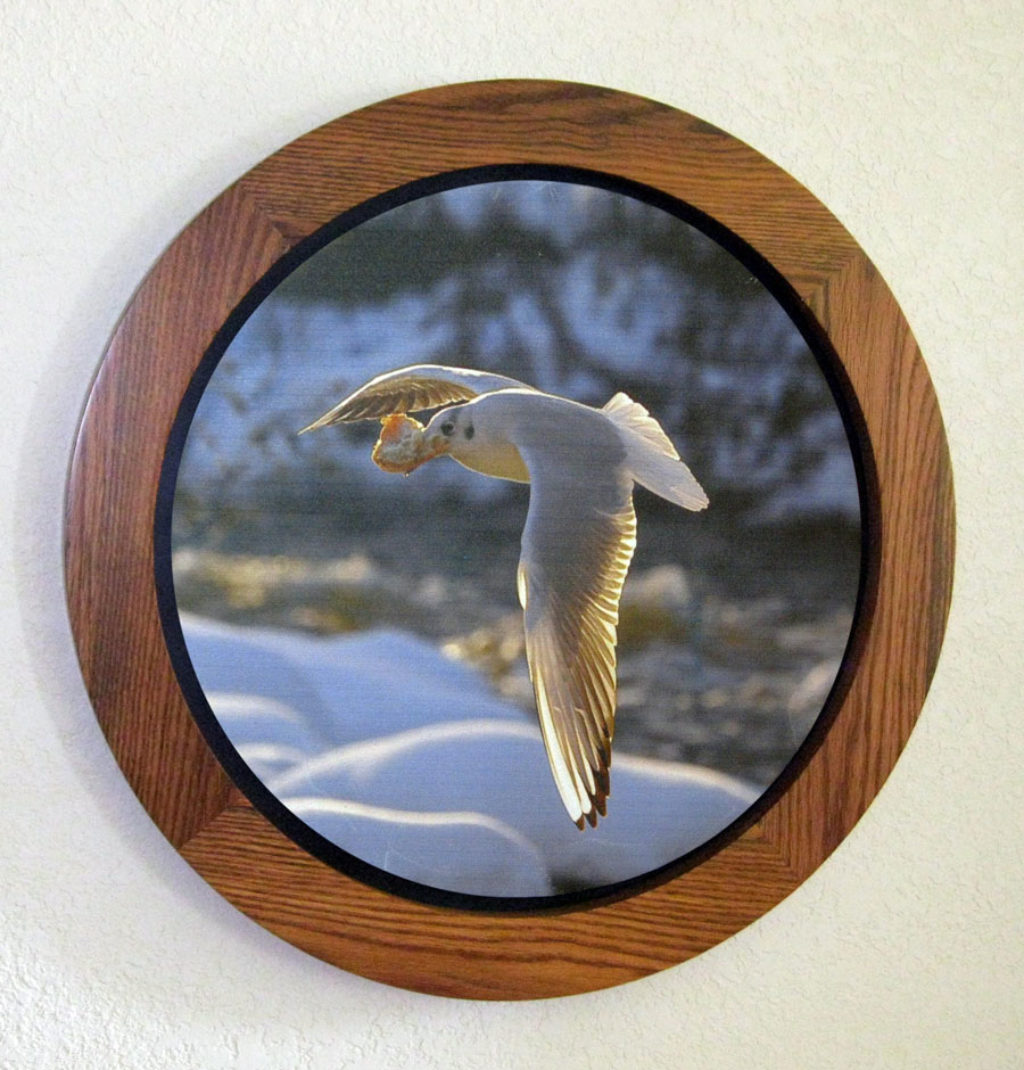 Round Floating Picture Frames Oak