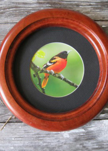 """Small Round Picture Frame with """"Inside Cove"""" Profile"""