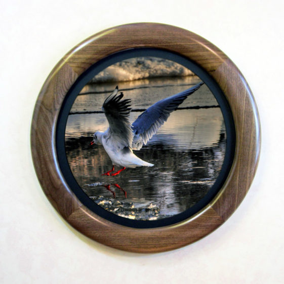 Walnut Round Picture Frame, with a Narrow Mat