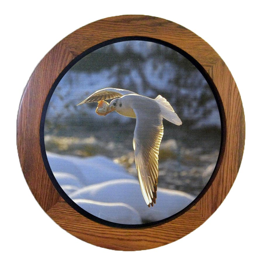 Round Floating Picture Frame Oak